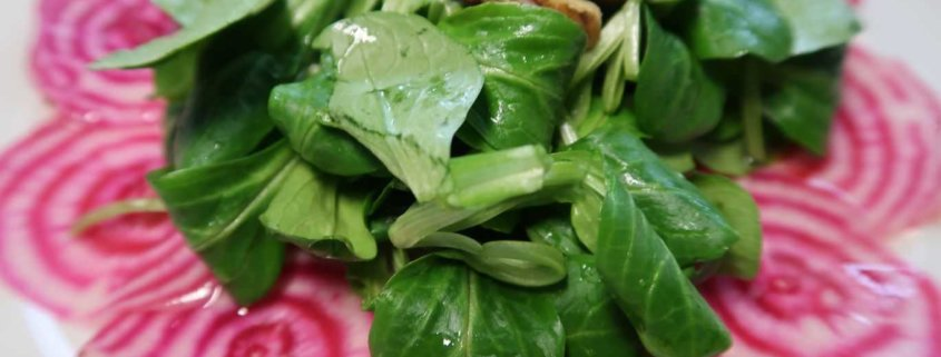 Randencarpaccio mit Salat