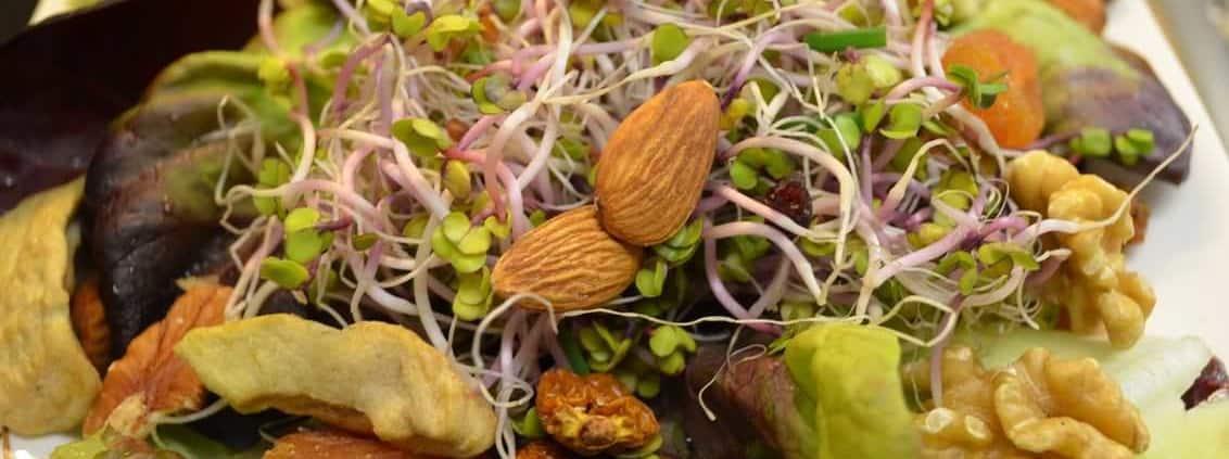 Salat mit Nüssen, getrockneten Früchten und Radieschensprossen