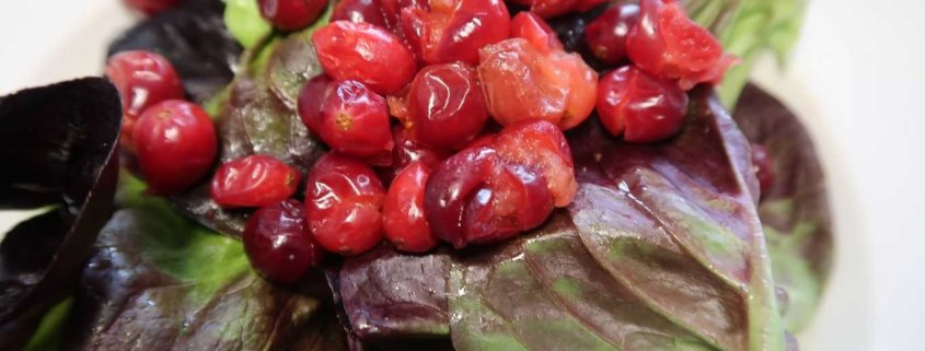 Salat mit Cranbarry