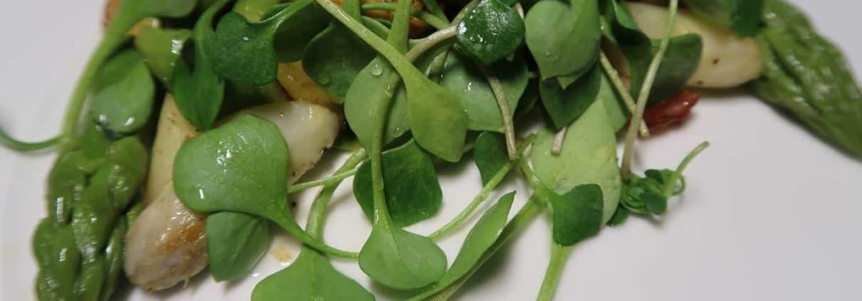 Bratkartoffeln mit Spargeln Speck und Portulak