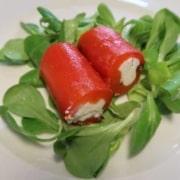 Paprikacannelloni gefüllt mit Ricotta