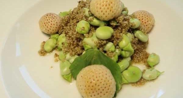 Quinoa Fave Bohnen Salat mit Ananaserdbeeren