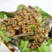 Lauwarmer Linsensalat auf Salatbett